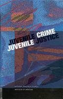 Juvenile Crime, Juvenile Justice Book