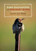 Rare Encounters with Ordinary Birds