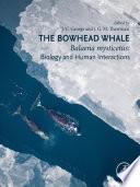 The Bowhead Whale