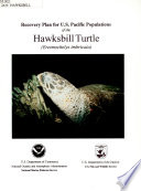 Recovery Plan For The Hawksbill Turtle Eretmochelys Imbricata  U S  Department Of Commerce  1994