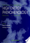 High Energy Phenomenology Proceedings Of The Workshop
