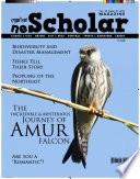 NEScholar Magazine Vol 03 Issue 01 2017 Book