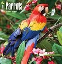 Parrots 2018 Wall Calendar