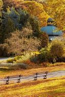 Mind Blowing Golden Autumn Park Journal