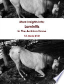 More Insights Into  Laminitis In The Arabian Horse