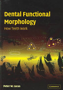 Dental Functional Morphology