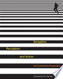 Sensation  Perception and Action