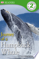 Journey of a Humpback Whale