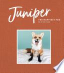 Juniper: The Happiest Fox