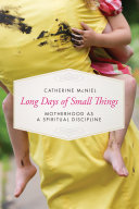 Pdf Long Days of Small Things
