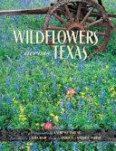 Wildflowers Across Texas