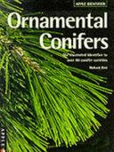 Identifying Ornamental Conifers
