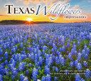 Texas Wildflowers Impressions