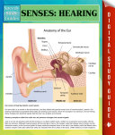 Senses  Hearing Speedy Study Guides