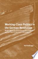 Working Class Politics in the German Revolution