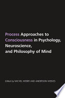 Process Approaches To Consciousness In Psychology Neuroscience And Philosophy Of Mind