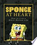 Sponge at Heart