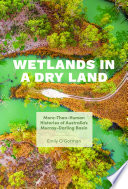 Wetlands in a Dry Land