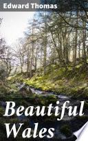 Beautiful Wales Book PDF