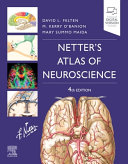 Netter s Atlas of Neuroscience