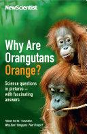 Why are Orangutans Orange  Book