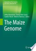The Maize Genome