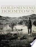 Gold Mining Boomtown