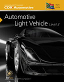 South African Automotive Light Vehicle Level 3
