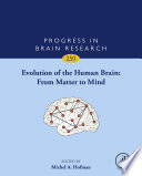 Evolution of the Human Brain  From Matter to Mind Book