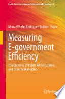 Measuring E Government Efficiency