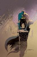 Batman  No Man s Land Book