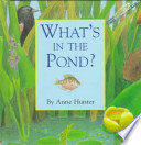 What's in the Pond?