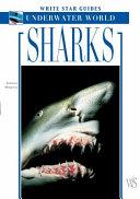 Pdf Sharks