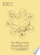 The Platyrrhine Fossil Record