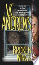 Broken Wings Book PDF