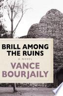 Brill Among the Ruins