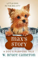Max s Story