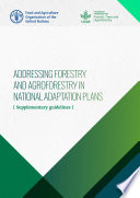 Addressing forestry and agroforestry in National Adaptation Plans