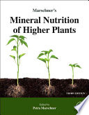 Marschner s Mineral Nutrition of Higher Plants Book