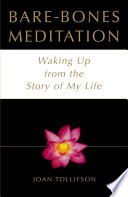 Bare Bones Meditation Book PDF