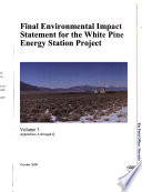 White Pine Energy Station Project