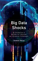 Big Data Shocks Book PDF