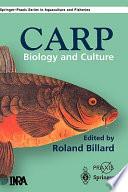 The Carp