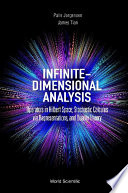 Infinite Dimensional Analysis Operators In Hilbert Space Stochastic Calculus Via Representations And Duality Theory