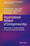 Organizational Mindset of Entrepreneurship