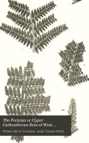The Permian Or Upper Carboniferous Flora of West Virginia and S. W. Pennsylvania
