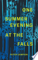 One Summer Evening at the Falls