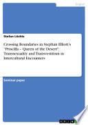 Crossing Boundaries in Stephan Elliott s Priscilla   Queen of the Desert Book PDF