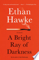 A Bright Ray of Darkness Book