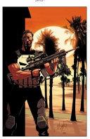 The Punisher Volume 1